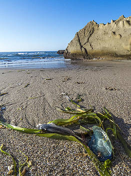 Washed Ashore by Kristal Talbot