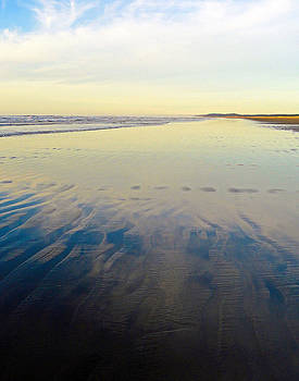 Robert Meyers-Lussier - Washington Beach Reflections