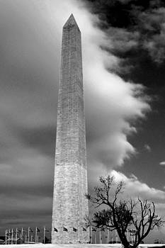 Leslie Cruz - Washington Monument 1