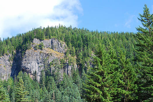 Connie Fox - Washington Mountainside Cliffs