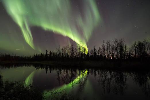 Wasilla Alaska Dancing Aurora Borealis by Sam Amato