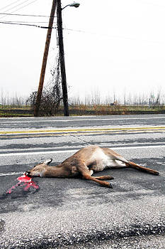 Wasted Life by Al Blount