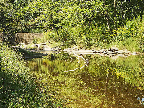 Watauga River 3 by Bill Talich