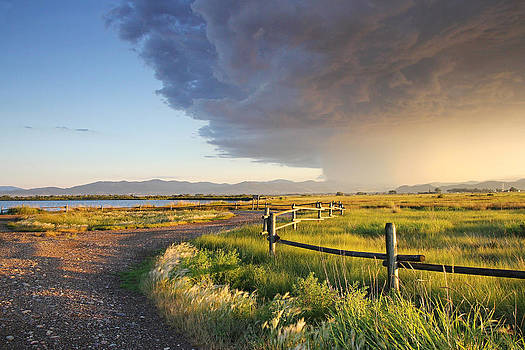 Watching the Storm by Dana Moyer