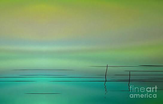 Water Abstract Aurora  by Andrea Kollo