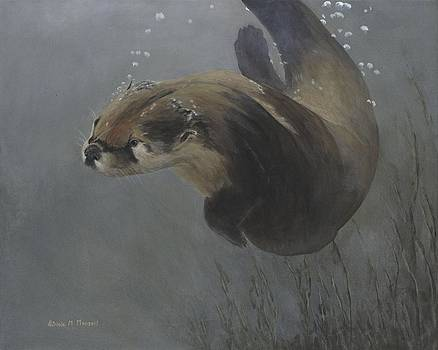 WATER ACROBAT - River Otter by Patricia Mansell