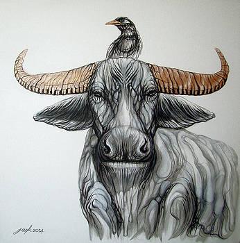 Water Buffalo - Myna Bird by Jack No War