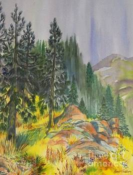 Water Color of Pines in the rain by Annie Gibbons