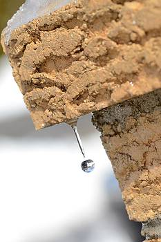 Water Droplet by Jennifer Wartsky