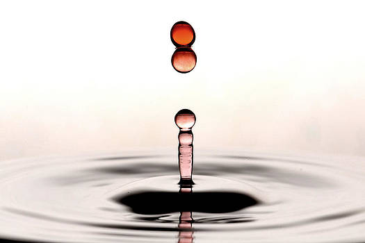 Water Droplets by Micah Flack