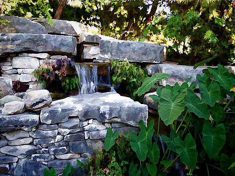 Water Fall at Fort Worth Botanic Gardens by Janet Maloy