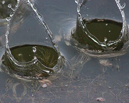 Water by Kelli Howard