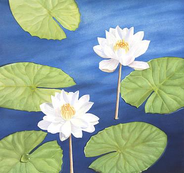 Water Lilies by Elena Polozova