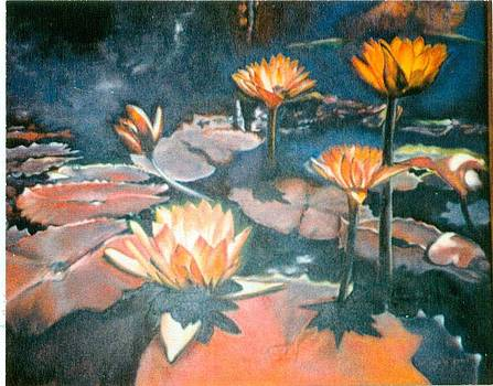 Water Lilies by Geri Jones