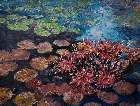 Water lilies by Horacio Prada