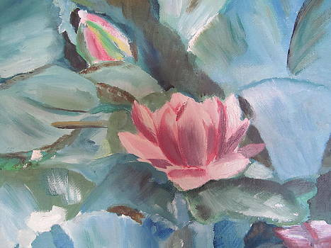 Water Lilies by Susan Voidets