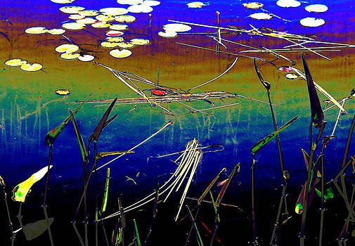 Water Lillies by Carolyn Reinhart