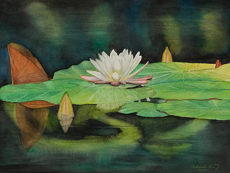 Water Lilly by Deborah King - DKS Studio