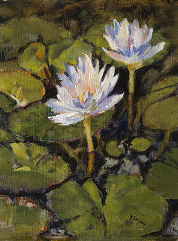 Water Lilly by Joyce Snyder