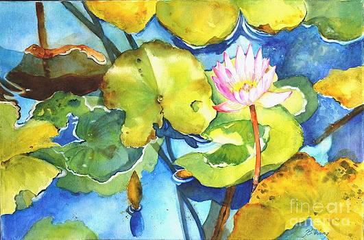 Betty M M   Wong - Water lily