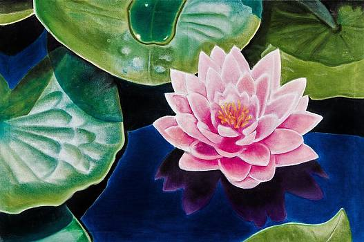 Water Lily by Brian Broadway