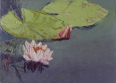 sold Water Lily by Irena  Jablonski