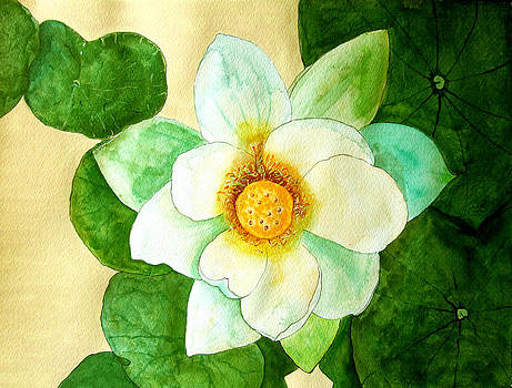 Water Lily Painting by Louise Grant