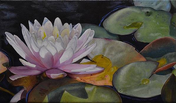 Scent of a Water Lily by Ralph Taeger