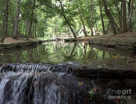 Water over the bridge by Lee Ann Newsom