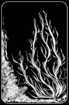 Water Plant by Mona  Bernhardt-Lorinczi