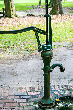 Steven  Taylor - Water Pump