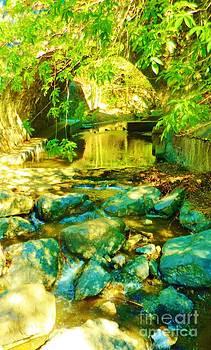 Water Rocks in Aqua by Sherry Stone
