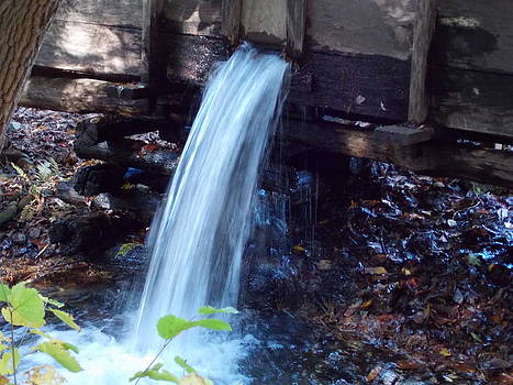 Water running fast by Regina McLeroy