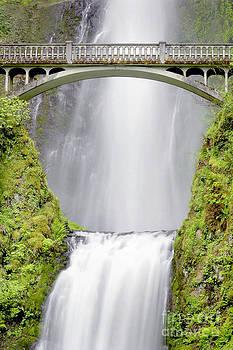 Douglas Taylor - WATER UNDER THE BRIDGE