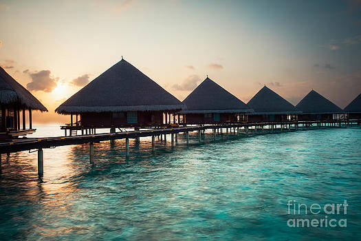 Waterbungalows At Sunset by Hannes Cmarits