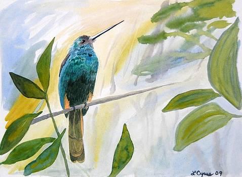 Watercolor - Jacamar in the Rainforest by Cascade Colors