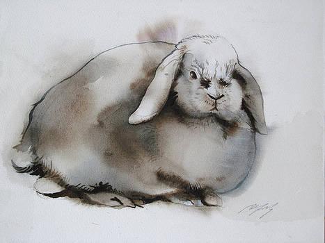 Alfred Ng - watercolor rabbit