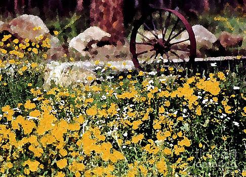 Watercolor Wheel  by Juls Adams