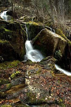 Guy Hoffman - Waterfall - Naramata DSC0065-001