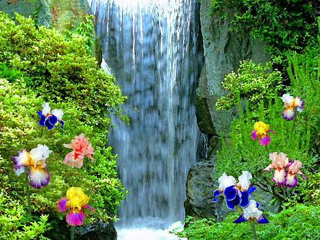 Waterfall And Iris Flowers by Susanna Katherine
