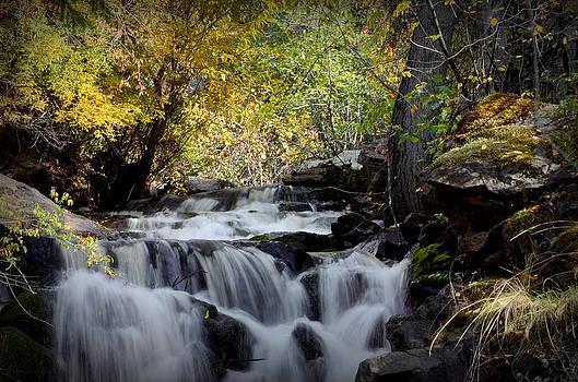Guy Hoffman - Waterfall at Indian Rock BC