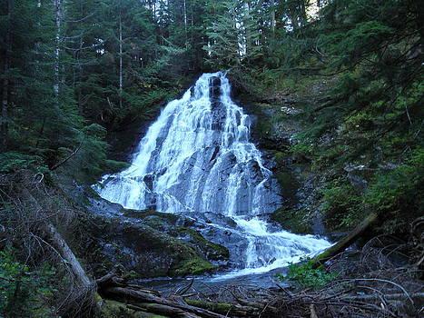 Waterfall by Charles Vana