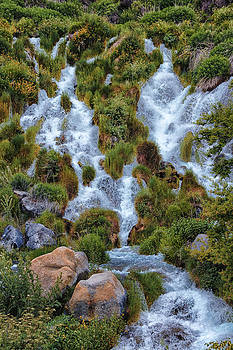 Waterfall Down by Christy Patino
