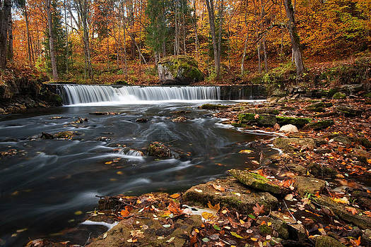 Waterfall in autumn by Anna Grigorjeva