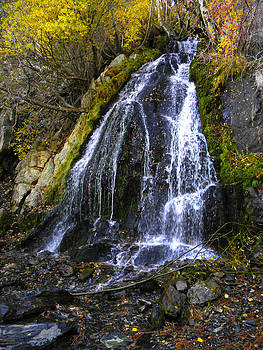Frank Wilson - Waterfall in Kings Canyon Nevada