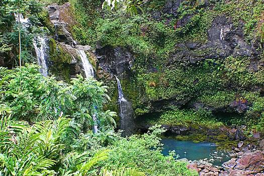 Waterfall in Maui by Jane Girardot