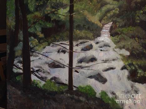 Waterfall in the Woods by Phyllis Norris
