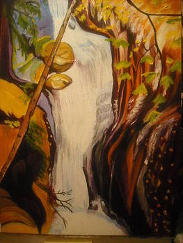 Waterfall by Mireille  Damicone