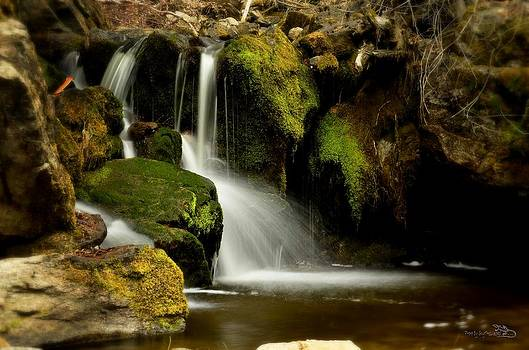 Guy Hoffman - Waterfall - Naramata DSC0043