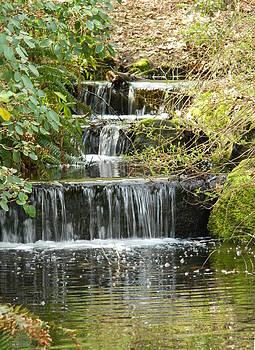 Nicki Bennett - Waterfall